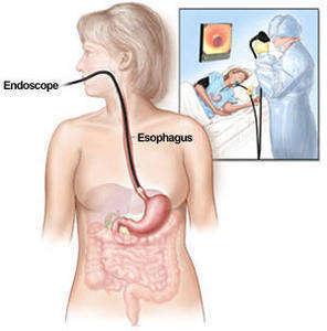 endoskopixx