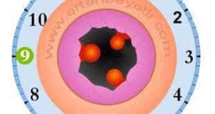 hemo259 310x165 - Basur (Hemoroid) Hastalığı