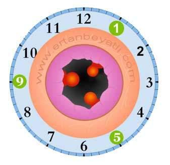 Saat yönlerine göre Hemoroid (Basur) dağılımı